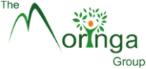 the moringa logo